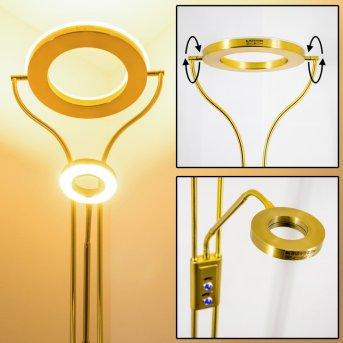 Donna Lámpara de pie LED Latón, 2 luces