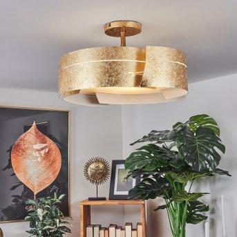 Novara Lámpara de techo dorado, 3 luces