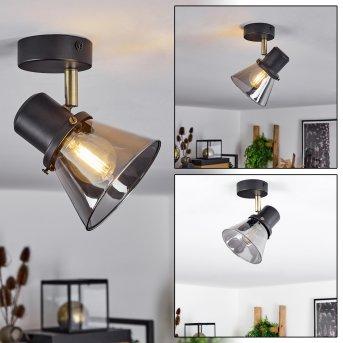 Abel Lámpara de Techo Negro, dorado, 1 luz