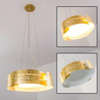 Novara Lámpara suspendida dorado, 3 luces
