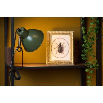 Lucide MOYS Lámpara con pinza Verde, 1 luz