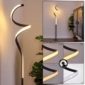 Pitasch Lámpara de Pie LED Negro, 1 luz