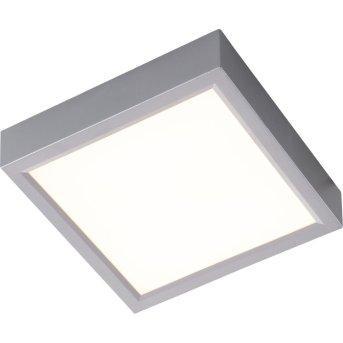 Nino-Leuchten PUCCY Lámpara de Techo LED Plata, 1 luz
