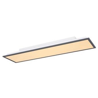Globo DORO Lámpara de Techo LED Blanca, 1 luz
