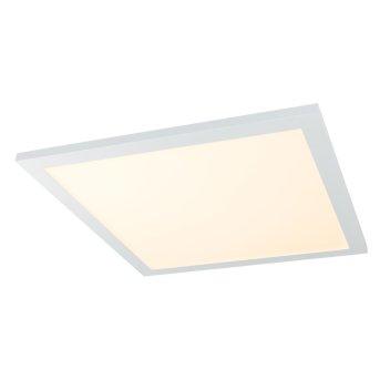 Globo ROSI Lámpara de Techo LED Blanca, 1 luz, Mando a distancia, Cambia de color