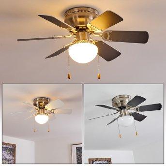 Trillo Ventilador de techo Níquel-mate, Gris, Blanca, 1 luz