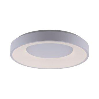 Leuchten-Direkt ANIKA Lámpara de Techo LED Blanca, 1 luz, Mando a distancia