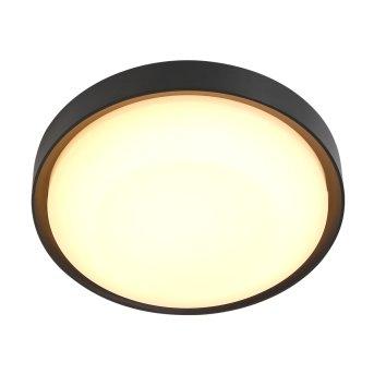 Steinhauer Fuga Lámpara de techo para exterior LED Negro, 1 luz