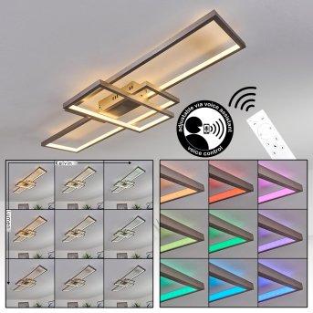 Momahaki Lámpara de Techo LED Níquel-mate, 1 luz, Mando a distancia