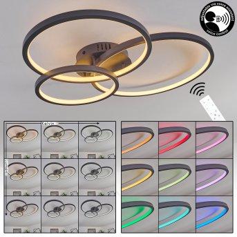 Moemoto Lámpara de Techo LED Antracita, 1 luz, Mando a distancia