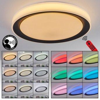 Gladstone Lámpara de Techo LED Negro, Blanca, 1 luz, Mando a distancia