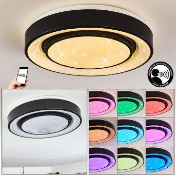 Grimacco Lámpara de Techo LED Negro, 1 luz, Cambia de color