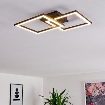 Thara Lámpara de Techo LED Negro, 1 luz