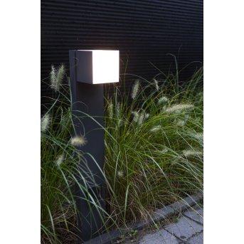 Lutec CUBA Poste de Jardín LED Antracita, 1 luz