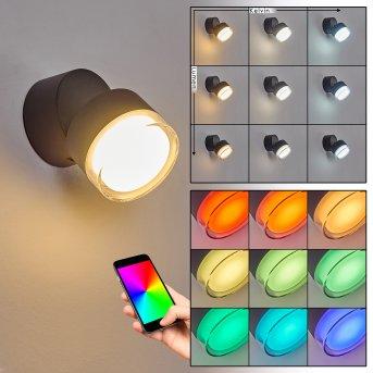 Papagayos Aplique para exterior LED Antracita, 1 luz, Cambia de color