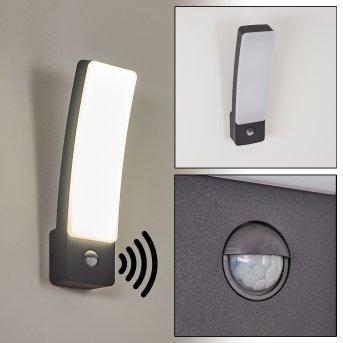 Maseru Aplique para exterior LED Antracita, 1 luz, Sensor de movimiento
