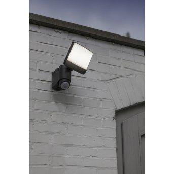 Lutec Sunshine Aplique para exterior LED Antracita, 1 luz, Sensor de movimiento