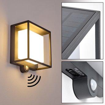 Lansing Aplique para exterior LED Antracita, 1 luz, Sensor de movimiento