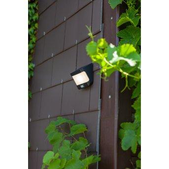 Lutec TRY Lámpara solare LED Antracita, 1 luz, Sensor de movimiento