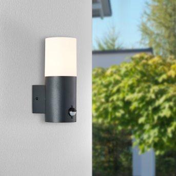 Brillliant Aberdeen Aplique para exterior Negro, 1 luz, Sensor de movimiento