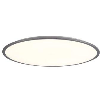 Brilliant Jamil Lámpara de Techo LED Plata, 1 luz, Mando a distancia