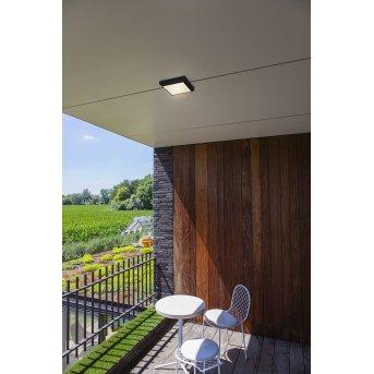 Lutec Helena Lámpara de techo para exterior LED Antracita, 1 luz