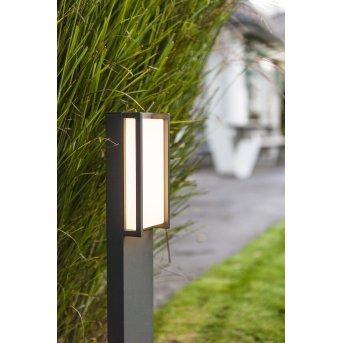 Lutec QUBO Poste de Jardín LED Antracita, 1 luz, Cambia de color