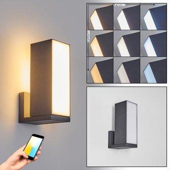 Swanek Aplique para exterior LED Negro, 1 luz