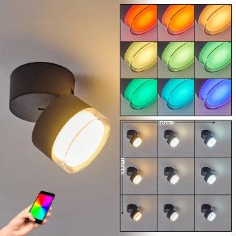 Papagayos Lámpara de techo para exterior LED Antracita, Blanca, 1 luz, Cambia de color