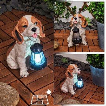 Sofie Lámpara solar LED Negro, Blanca, Naranja, 1 luz