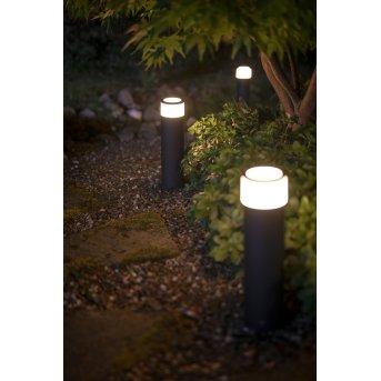 Philips Hue Ambiance White & Color Calla Pedestal, set básico LED Negro, 1 luz, Cambia de color
