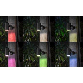 Philips Hue Ambiance White & Color WACA Lily Spot, set básico de 3 LED Negro, 1 luz, Cambia de color