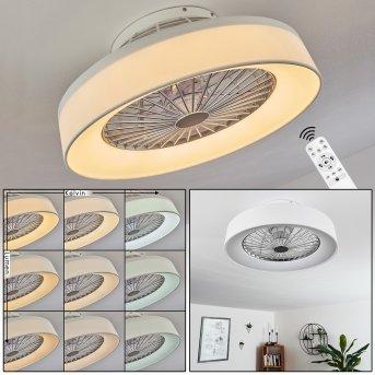 Moli Ventilador de techo LED Blanca, 1 luz, Mando a distancia