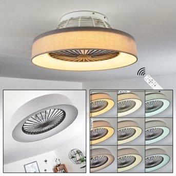 Moli Ventilador de techo LED Gris, Blanca, 1 luz, Mando a distancia
