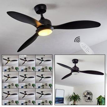 Chiapeto Ventilador de techo LED Negro, 1 luz, Mando a distancia