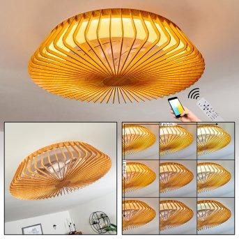 Rivarotta Ventilador de techo LED Blanca, 1 luz, Mando a distancia