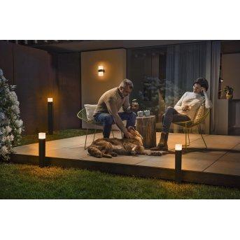 LEDVANCE CUBE Poste de Jardín Gris, 1 luz, Cambia de color