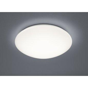 Trio Paolo Lámpara de Techo LED Blanca, 1 luz