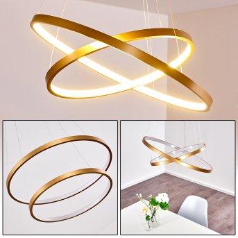 Canisteo Lámpara Colgante LED dorado, 2 luces