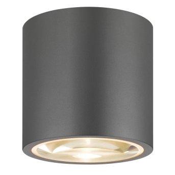 LCD Typ 065 Lámpara de Techo Gris, 1 luz