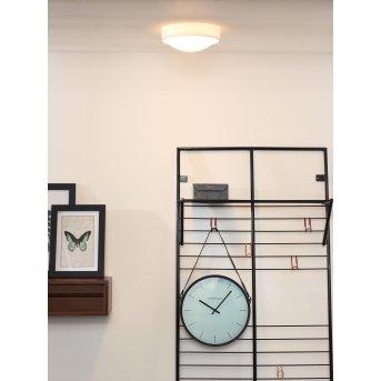Lucide LEX Lámpara de techo Blanca, 1 luz