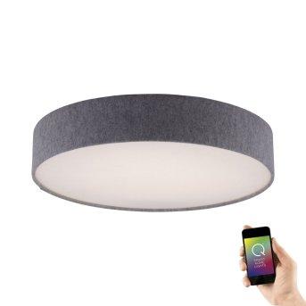Paul Neuhaus Q-KIARA Lámpara de Techo LED Gris, 1 luz, Mando a distancia