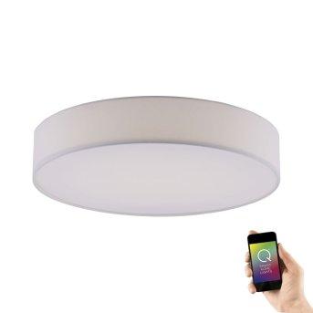 Paul Neuhaus Q-KIARA Lámpara de Techo LED Blanca, 1 luz, Mando a distancia