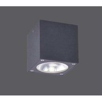Paul Neuhaus GEORG Lámpara de Techo LED Antracita, 1 luz