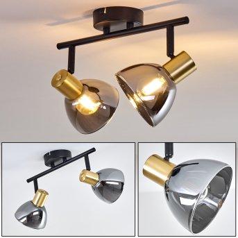 Mariefred Lámpara de Techo Negro, 2 luces