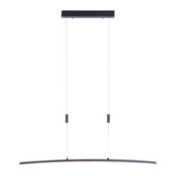 Lámpara Colgante Paul Neuhaus JANINA LED Antracita, 1 luz