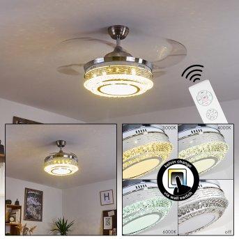 Bendigo Ventilador de techo LED Níquel-mate, Transparente, claro, 1 luz