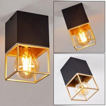 Agawam Lámpara de Techo Negro, 1 luz