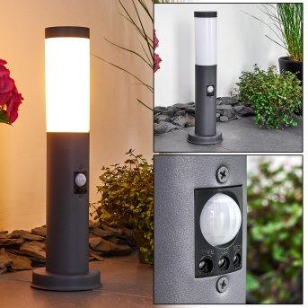 Gaborone Poste de Jardín Antracita, 1 luz, Sensor de movimiento