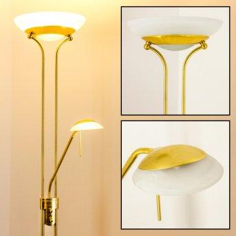 Biot Lámpara de pie LED Latón, 2 luces
